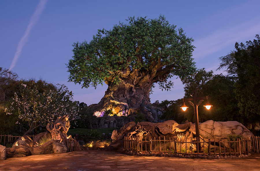 nighttime-safari-offered-at-animal-kingdom-is-a-Disney-secret